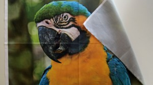Impression de photos sur tissu coton, lin, soie