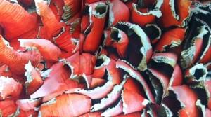 Gérald Pestmal : du carton recyclé au tissu